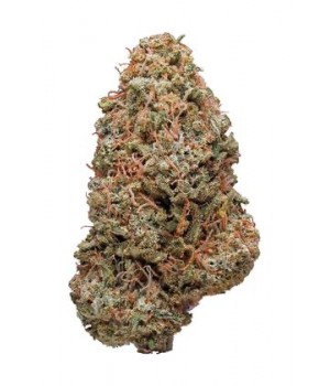 White Russian Green house - 6%